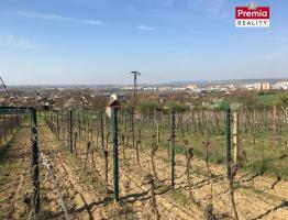Prodej zahrady s vinicí v Dobšicích